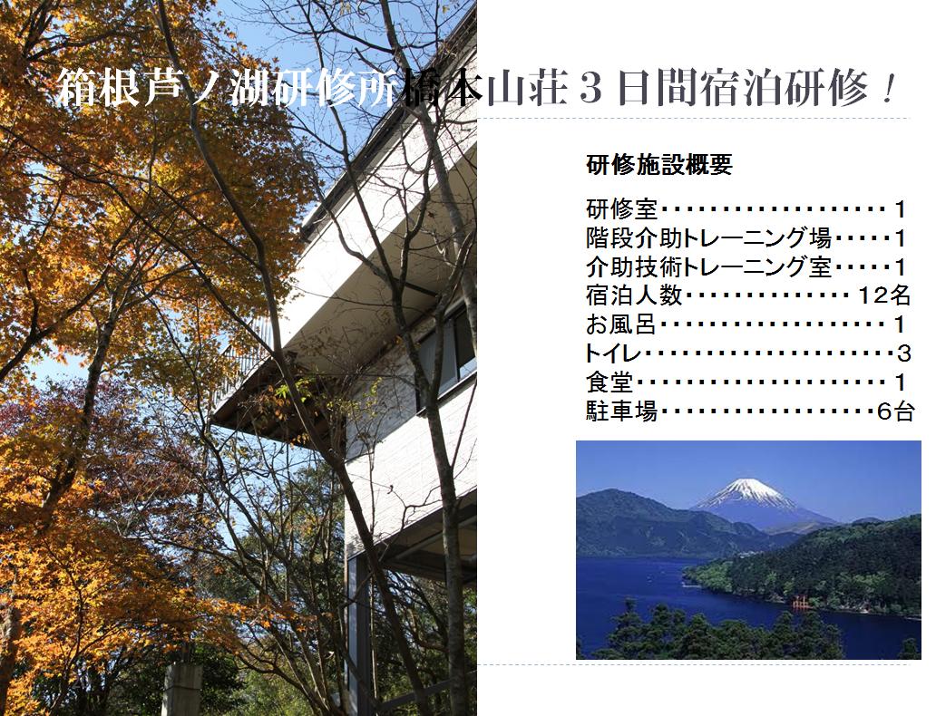 コアラの箱根芦ノ湖研修所